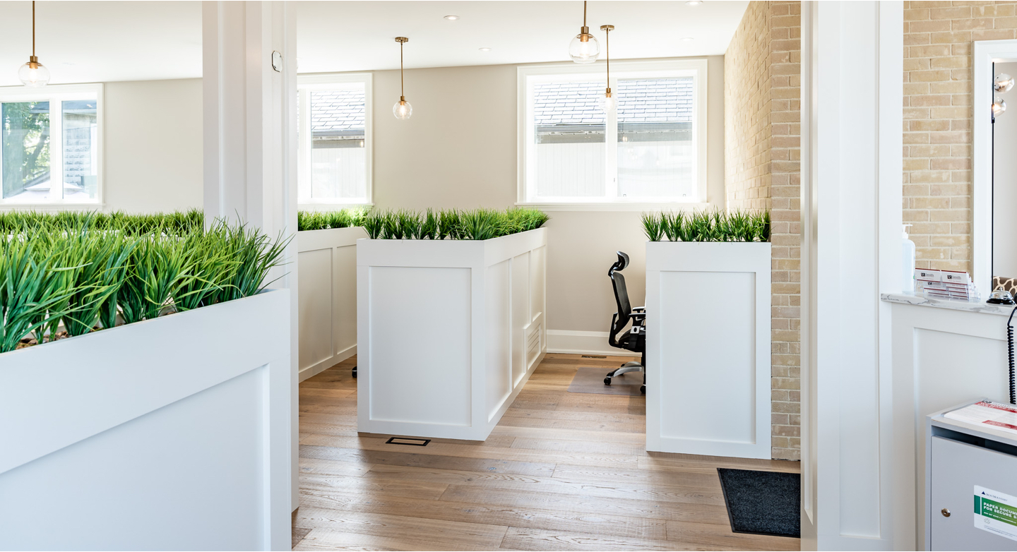 White desks in a white room with hardwood floors and small plants lining the edges of the desks